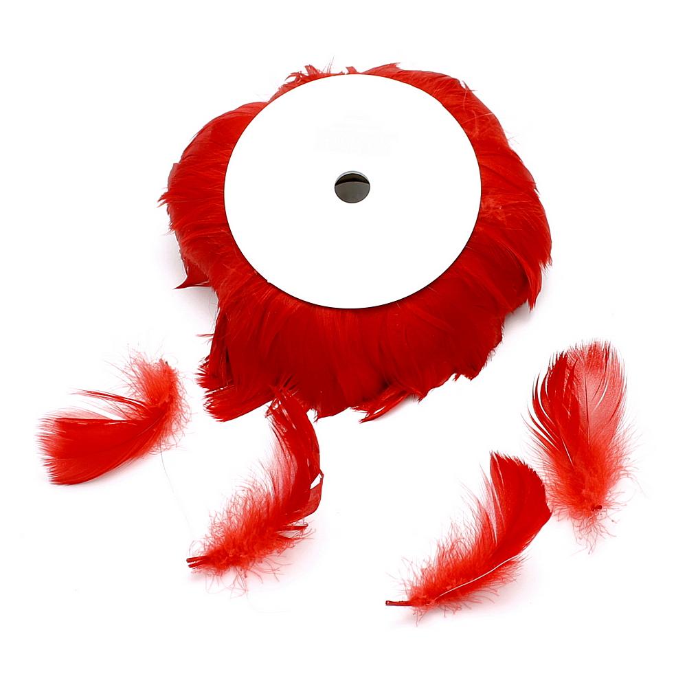 10 Meter Federn am Draht, Federn 6-11cm, viele Farben !!! 123 rot